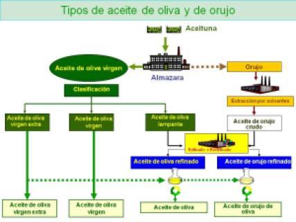 obtencion_aceite_oliva
